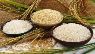 Điểm Sáng Cho Tình Hình Gạo Châu Á, Đậu Tương Được Phục Hồi Ở Mỹ