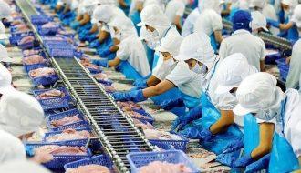 Năm 2021 xuất khẩu thủy sản ước tính đạt trên 9,4 tỷ USD