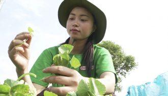 Nhiều doanh nhân Việt tại trời Âu đi lên từ nông sản Việt Nam