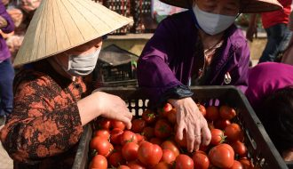 Tỉnh Quảng Ninh kêu gọi cộng đồng tiêu thụ hàng hoá giúp nông dân