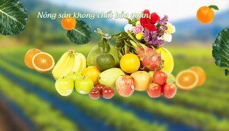 Trung thiếu hụt nhiều mặt hàng đây là cơ hội lớn cho nông sản Việt sang